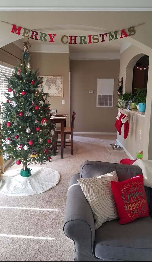 Christmas Decor, Apartment decor, holiday, merry christmas